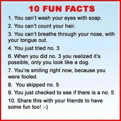 10 fun facts